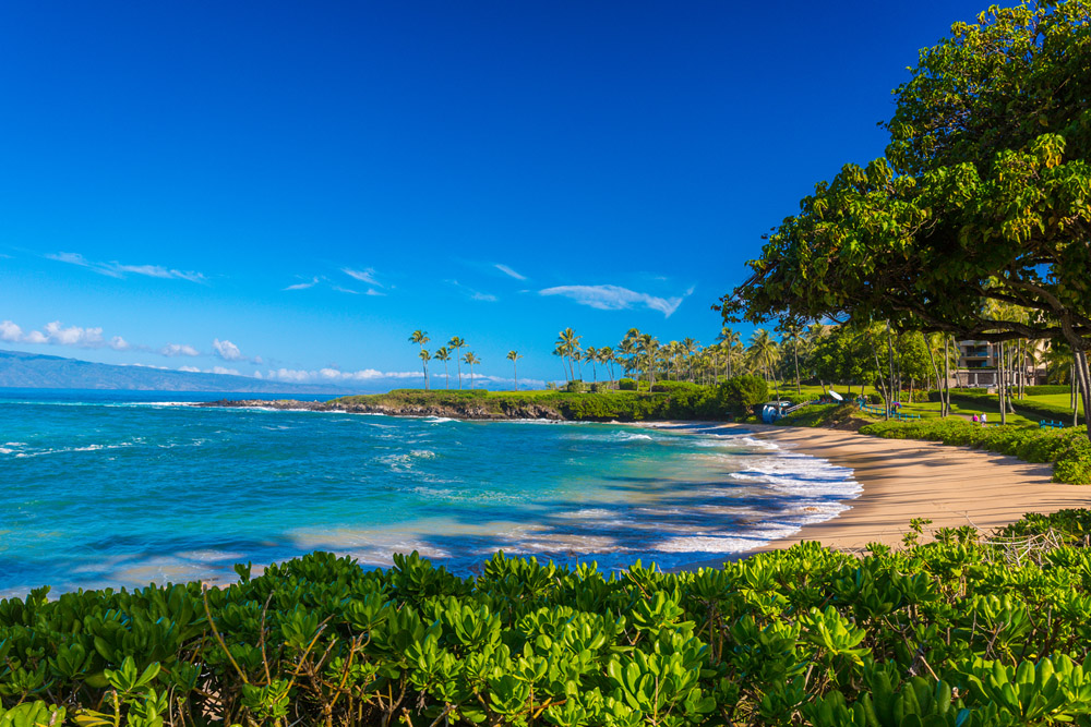 Steps To The Award-Winning Kapalua Bay and Beach
