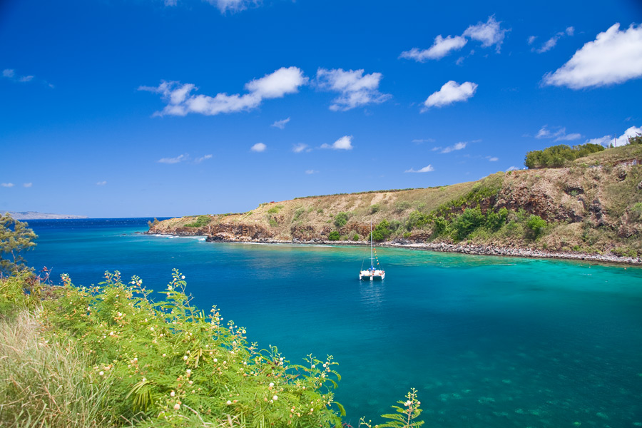 Honolua and Mokule`ia Bays located just north of Kapalua Resort have been...