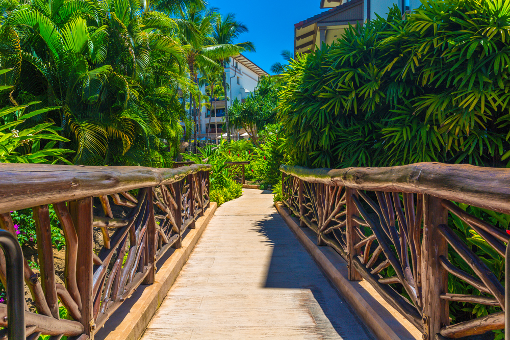 Beautiful Gardens & Walkways throughout Wailea Beach Villas
